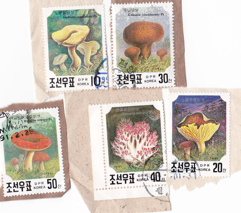 L4324, Korea Set of 5 pcs Postal Used Stamps, 1991 Mushroom