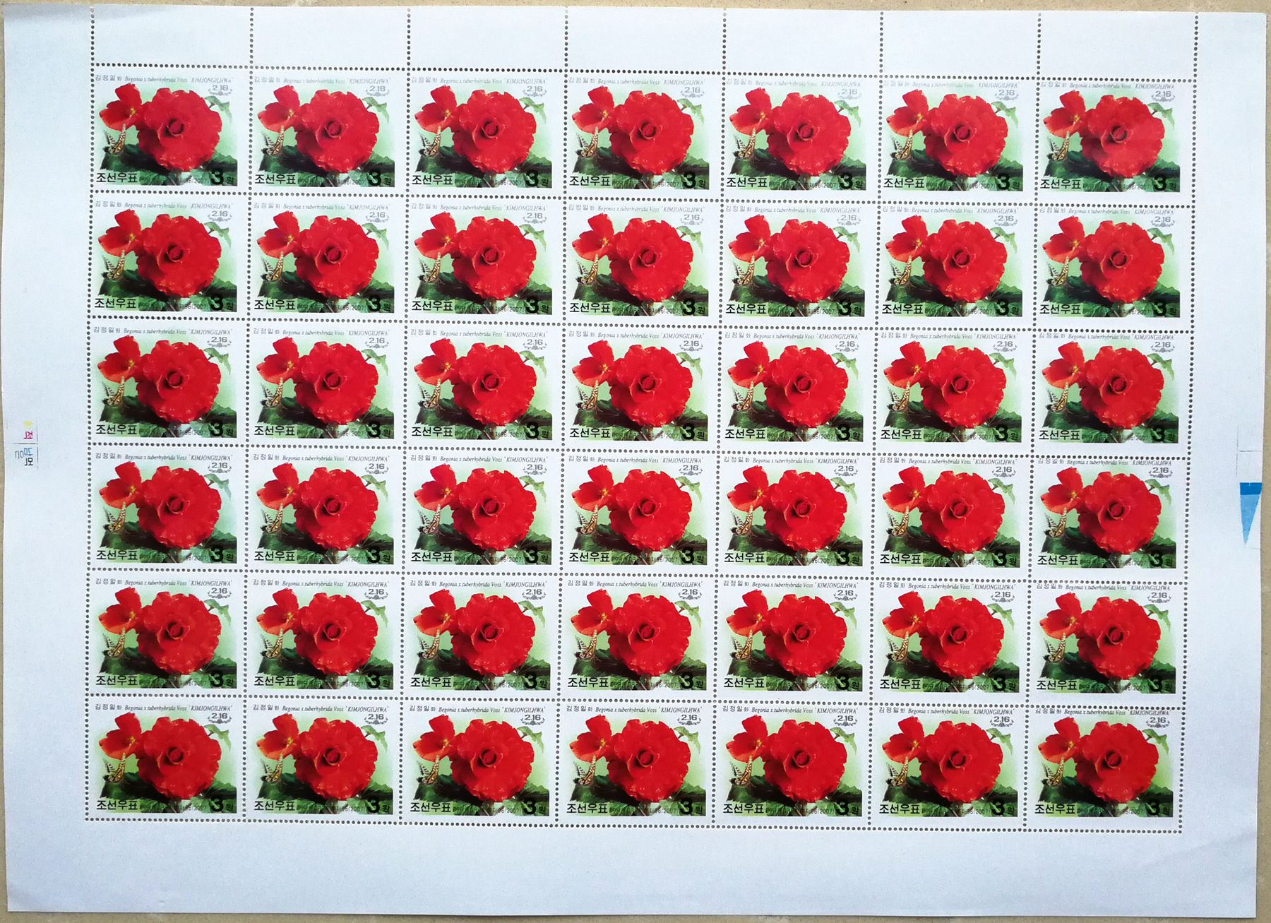 "L4464, Korea ""Kimjongilia Flower, Birthday of Kim"", Full Sheet of 42 Pcs Stamps, 2007"