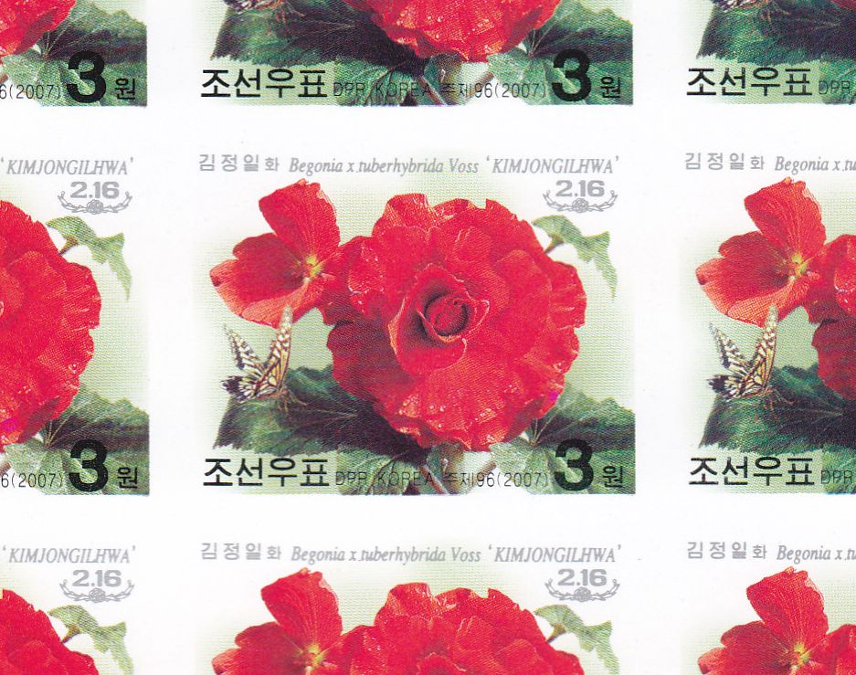 "L4467, Korea ""Kimjongilia Flower, Birth Kim"", Sheet of 21 Pcs Stamps, 1996 Imperforate"
